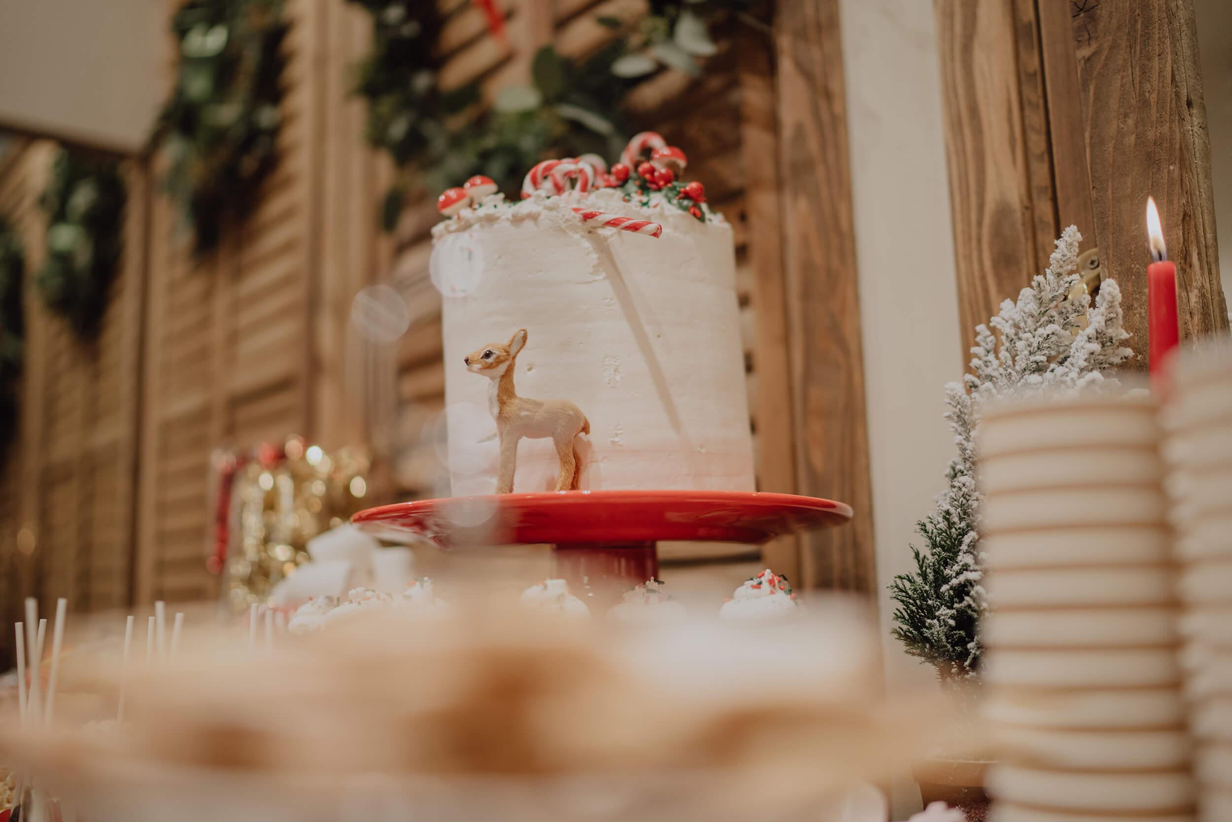 roma-organizacao-eventos-festa-de-natal-loja-brownie-16