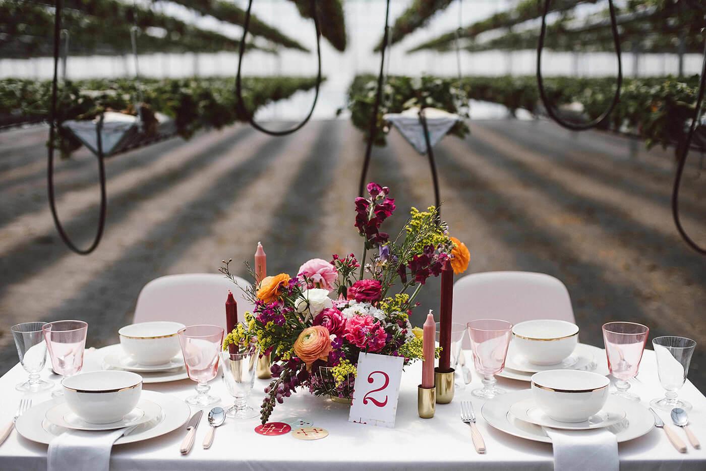 roma-organizacao-eventos-editorial-mid-century-modern-wedding-in-a-strawberry-field-04