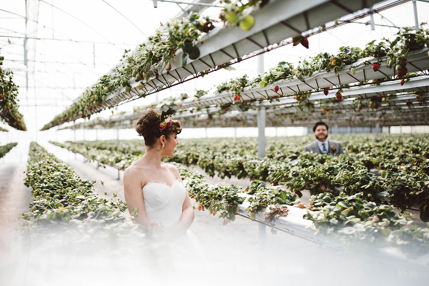 roma-organizacao-eventos-editorial-mid-century-modern-wedding-in-a-strawberry-field-12