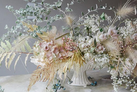 Entre muitas flores, qual é a flor eleita?